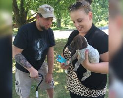 Disabled Veteran Is Looking To Adopt A Puppy. Then A Kennel Employee Does The Unthinkable