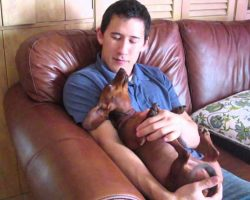Mom Catches Son Singing Sweet Lullaby With Adorable Dachshund