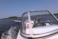 Pug Drives a Boat and Takes On The Open Water!