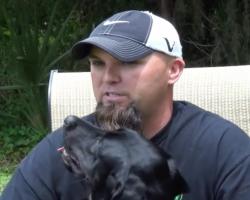 War Veteran Has A Panic Attack During An Interview. Watch The Service Dog…