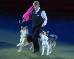 Dogs Dance To 'Singing In The Rain' And Absolutely Charm Audience