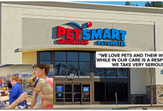 BREAKING: At Least 4 Dogs Die After Grooming Appointments At PetSmart