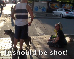 Man's aggressive dog breed social experiment catches people's true feelings on camera