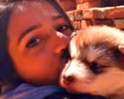 Woman Adopts 'Tiny' Puppy – But Realizes Her Hilarious Mistake A Year Later