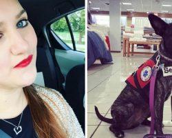 Service Dog Misses Alert After Stranger's Daughter Hits Him. Dog's Owner Ends Up In Hospital