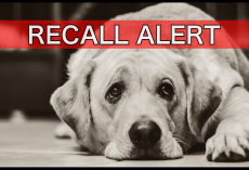 BREAKING: Major Pet Food Company Recalls 548 Cases Due To Elevated Hormone Levels