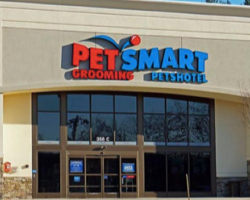 Four Dogs Have Died After Being Groomed At PetSmart – Here's What Pet Owners Need To Know