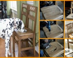 How To Make A Raised Feeding Station Using Old Chairs