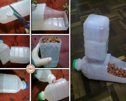 How To Quickly & Easily Make An Eco-Friendly Pet Feeder Out Of Plastic Bottles