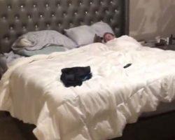 Dad Hears Strange Noises In The Bedroom, Walks In On Cutest Scene Imaginable