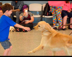 Boy With Autism Never Let Anyone Touch Him, Then He Meets His New Service Dog