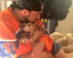 Kevin Smith Writes Painful Farewell To His 17-Year-Old Dog, And It'll Bring You To Tears