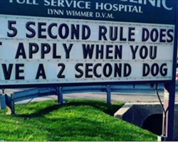These 13 signs prove that vets have a great sense of humor