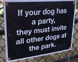 15 Weirdly Awesome Dog Signs That Will Make Any Dog Person Laugh