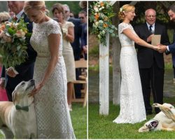 Dog Hilariously Photobombs His Owners' Wedding Vows And Totally Steals The Show