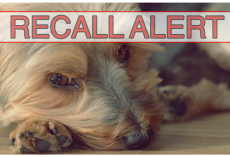 BREAKING: Pet Food Recalled Due To Vitamin D Toxicity In 3 Dogs