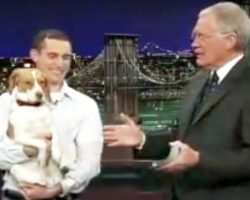 When Bailey The Beagle Performs Her 'Trick,' Letterman Can't Stop Cracking Up