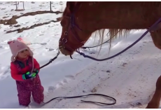 Little Girl Walks Horse In Snow, But Horse's Response To Getting Stuck Is Melting Hearts