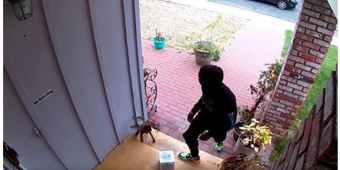"""Man Builds """"Glitter Fart Bombs"""" That Explode On Package Thieves"""