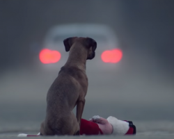 Short Film's Unique And Powerful Statement On Pet Abandonment Really Hits Home