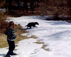 Family Takes Dog Outside In The Snow, And They're In Tears Watching Him Go