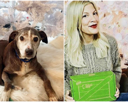 Tori Spelling Adopts 14-Year-Old Dog Who Was Dumped At Shelter Before Christmas