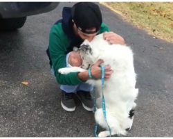 Dog Was In So Much Pain He Couldn't Be Touched- Now Can't Stop Hugging His New Dad