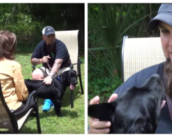 Veteran With PTSD Has Panic Attack On Camera, His Hero Service Dog Steps In