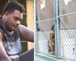 NFL player asks shelter for least adoptable dog and here's who they gave him