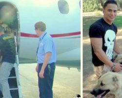 Flights Refuse To Fly Marine's Rescue Dogs, So Heiress Steps In With Private Jet
