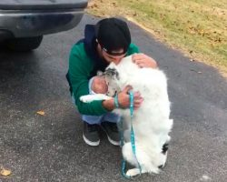 Abused dog was so diseased he couldn't be pet – now, can't stop hugging his new owner