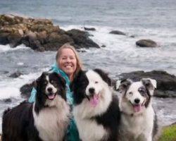 She knew she would die, instead of thinking about herself, her final wish went to her puppies!