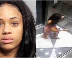 Model Caught Kicking Her Dog Repeatedly In Stomach – Gets Probation In Plea Deal