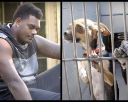 NFL Player Walks Into Shelter And Asks For The Least Adoptable Dog, Here's Who Came Home With Him