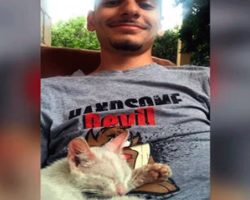 Guy Takes A Nap Outside — Wakes Up With A Kitten On His Stomach