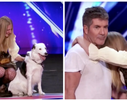 Simon Cowell Jumps On Stage With This Incredible Dog Act To Settle It
