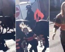 WATCH: Young Woman Smacks Police Horse, Doesn't Anticipate Horse's Response