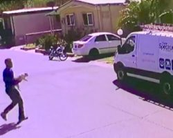Trusted Cable Guy Betrays Family's Trust, Caught On Camera Stealing Family Dog