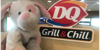 Dairy Queen Hopes Social Media Will Reunite Child With Long Lost Stuffed Dog
