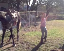Little Girls Start Dancing To Popular Song, But It's The Horse That Has The Internet In Laughter
