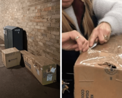 Woman finds boxes shut tight with tape by trash, discovers 11 animals trapped inside