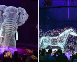 German Circus Now Using Holograms Instead Of Live Animals For A Cruelty-Free Magical Experience
