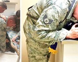 Airman Holds Dying Military Dog, Then Boss Orders Staff To Get American Flag Quick