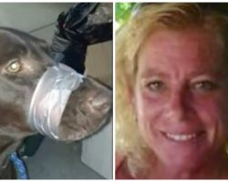 Animal Abuser Found Guilty Of Duct Taping Dog's Mouth Shut For Barking