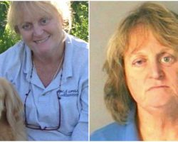 Woman Arrested After She Pushed Her Senior Lab Into A Lake & Watched Him Drown