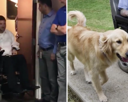 Man Thinks He's Going To A Meeting, Gets A Service Dog Instead