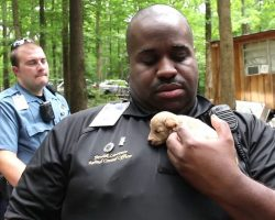 Cops Rescue 500 Puppies From A Puppy Mill, One Year Later, They Reunite