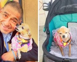 Police Snatch Away Homeless Man's Pooch, She Was His Only Family In The World
