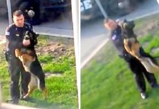 Shameless Police Officer Dangles His K9 Mid-Air, Strangles Him & Whips Dog With Leash