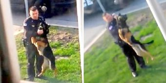 Shameless Police Officer Dangles His K9 Mid-Air, Strangles Him & Whips Dog With Leash